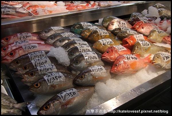 好新鮮阿,每條魚都亮晶晶