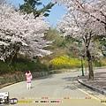 2012年4月 - 水原華城(1280x1024)