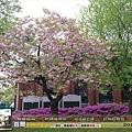 2012年5月 - 首爾教育博物館(1024x768)