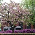 2012年5月 - 首爾教育博物館(1920x1080)
