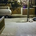 20101128/巷口的景象