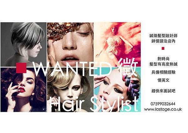 wanted hair stylist