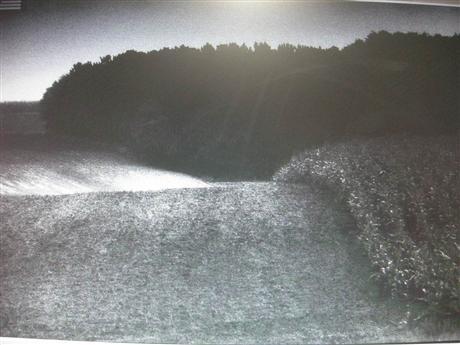 安德烈‧馬丁(André MARTIN),(無題)風景(Sans titre), Paysage)攝影作品.jpg