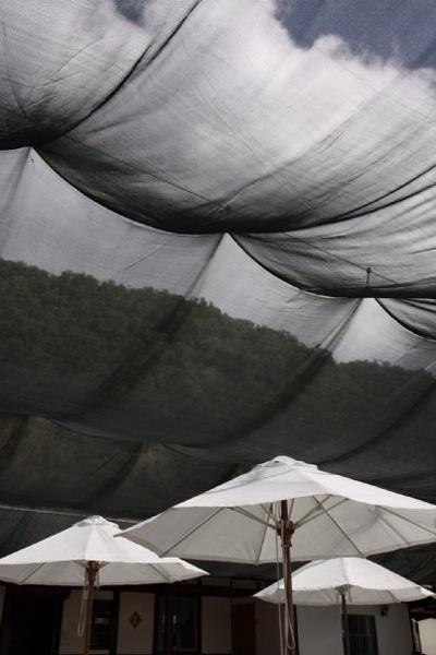 赤柯山上餐廳的庭院