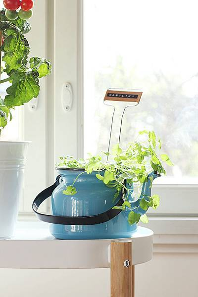 Omapuutarha IKEA 02 Pinjacolada.jpg