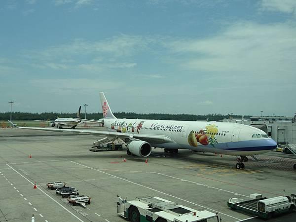 要飛回台灣時,看到水果班機!!!