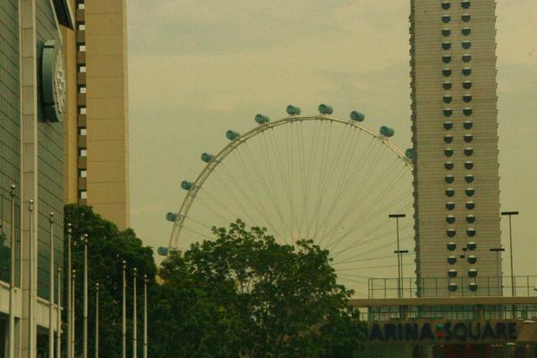 一起在新加坡的生活
