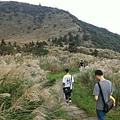20161023,陽明山健行。_2738.jpg