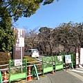 日本九州20170212_442.jpg