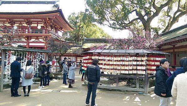 日本九州20170212_073.jpg