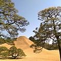 日本九州20170212_497.jpg