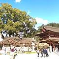 日本九州20170212_076.jpg