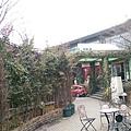 日本九州20170212_347.jpg