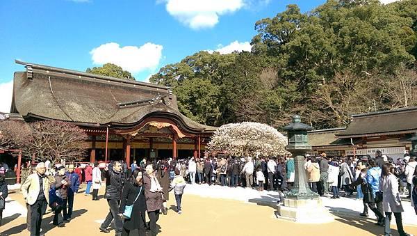 日本九州20170212_074.jpg