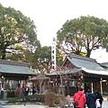 日本九州20170212_108.jpg