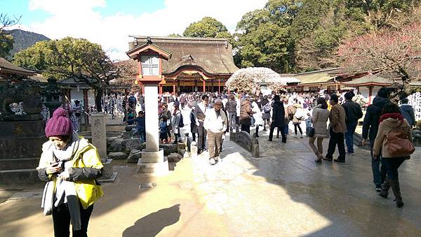 日本九州20170212_075.jpg