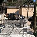 日本九州20170212_060.jpg