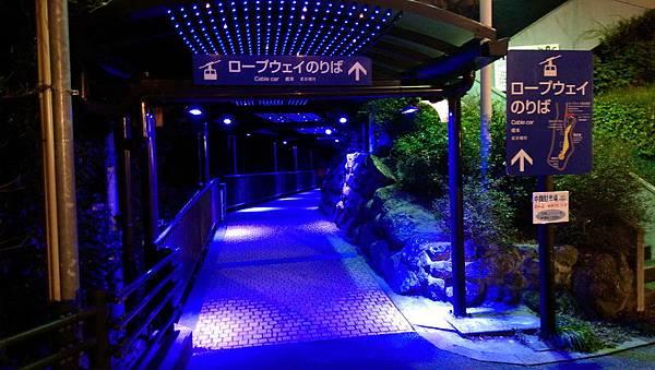 日本九州20170212_284.jpg
