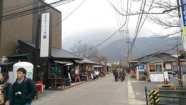 日本九州20170212_327.jpg