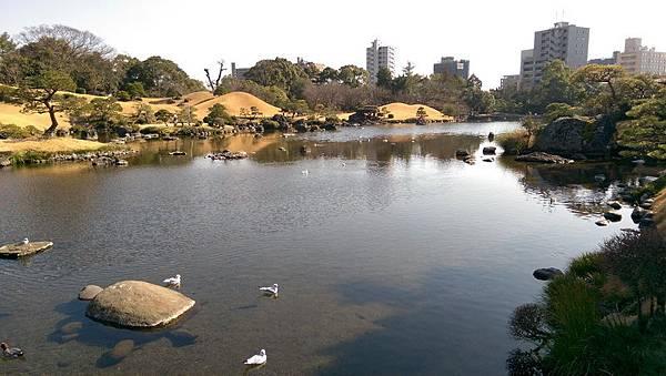 日本九州20170212_489.jpg