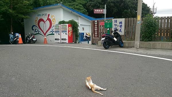 台東旅遊20170902_170904_0030.jpg