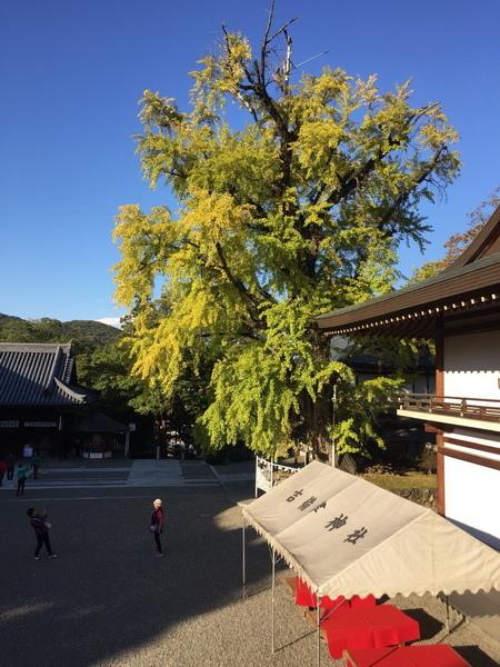 1028-1031岡山旅行_181102_0073_調整大小.jpg