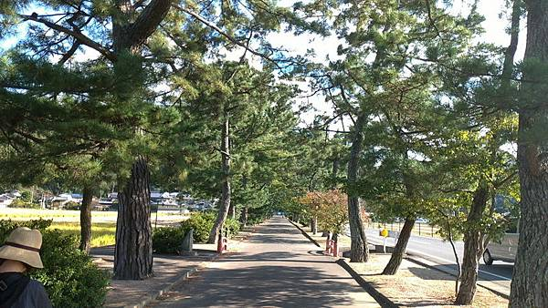 岡山倉敷20181028_181102_0195_調整大小.jpg