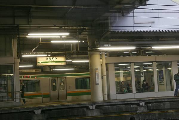 IMG_6597-1