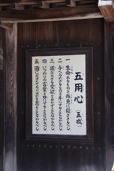 IMG_4455-1.jpg
