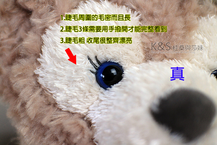 IMG_8285.jpg