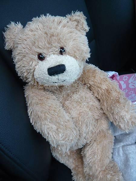 小熊也混上車了.JPG