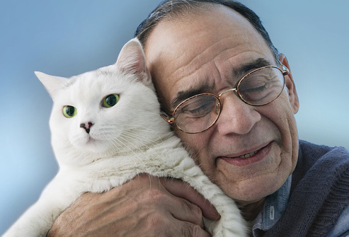 photolibrary_rm_photo_of_older_man_with_cat