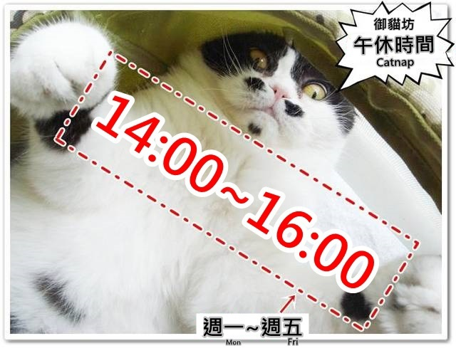 1380572650-3446545084