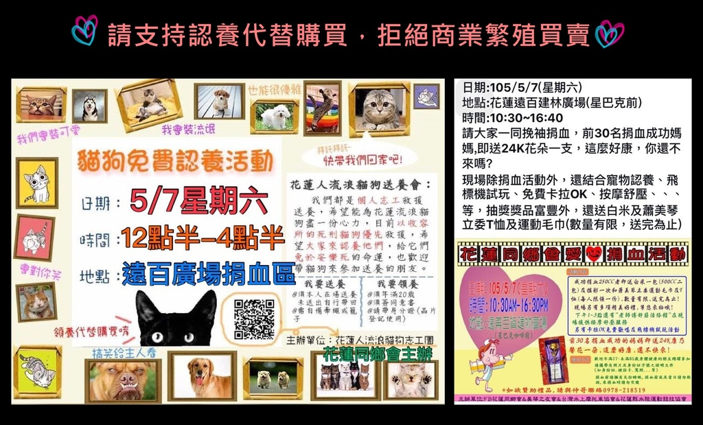adoption activity far east department may 7