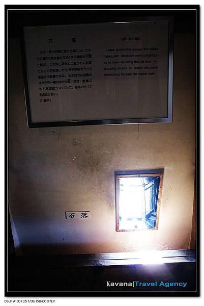 DSC08679_nEO_IMG.jpg