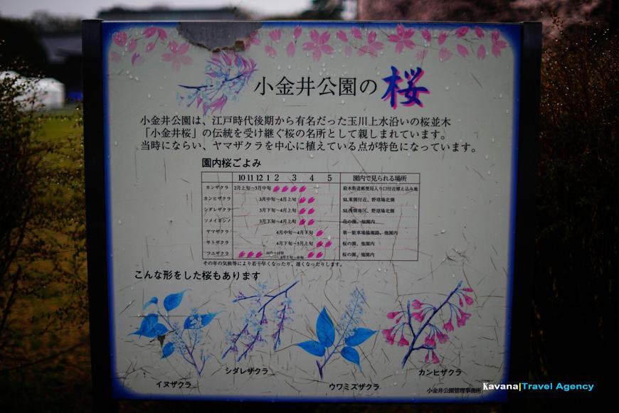DSC03122.jpg