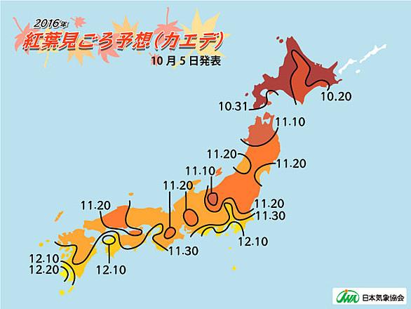 chart_large