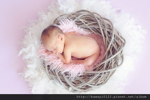 baby-784608__340.jpg