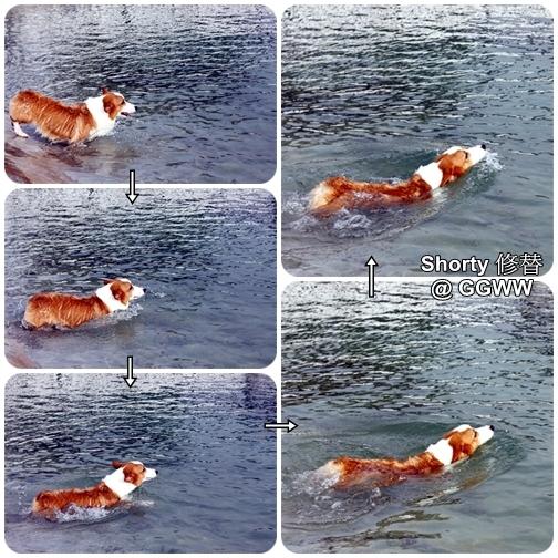 冬泳 1.jpg