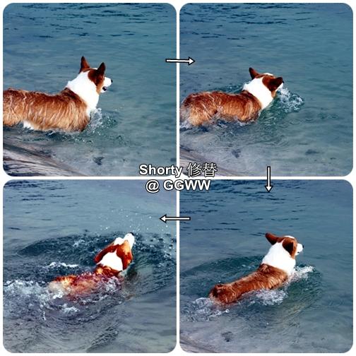 冬泳 2.jpg