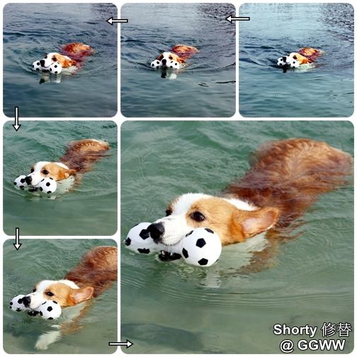 冬泳 5.jpg