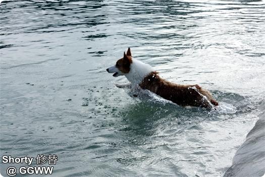 冬泳 16.jpg