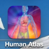 HUMAN ALATS