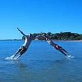 飛躍的Kris+Jacky
