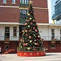 QV內的聖誕樹.JPG