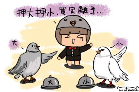 鴿子賭.jpg