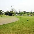 綠風大草坪