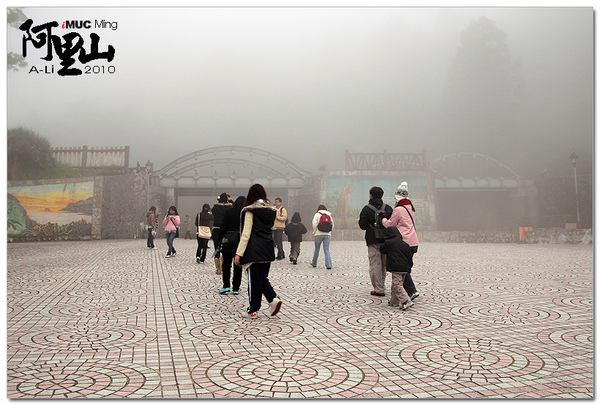 阿里山的下午霧超大