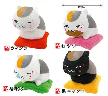 貓咪老師小布偶