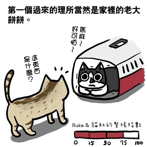 貓奴23-1.jpg